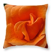 Known As Easy Does It  Throw Pillow