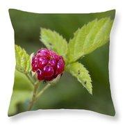 Knox Berry Farms Boysenberry Fruit Throw Pillow