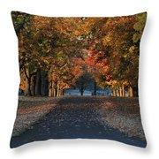 Knox Fall 8554 Throw Pillow