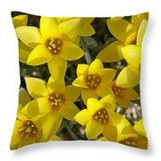 Kolpakowskis Tulip Tulipa Throw Pillow