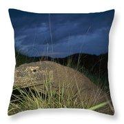 Komodo Dragon Varanus Komodoensis Throw Pillow
