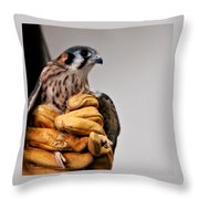 Krestrel Markings Throw Pillow