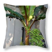 La Hacienda Throw Pillow