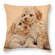 Labradoodle Puppies Throw Pillow