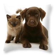 Labrador Pup And Birman-cross Kitten Throw Pillow