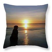 Labrador Watching The Sun Set Throw Pillow