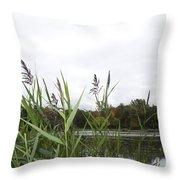 Lac Des Castors Throw Pillow