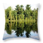 Lac Long Throw Pillow