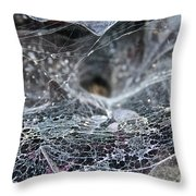 Lacey Lurker Throw Pillow