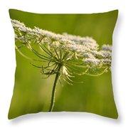Lacy White Flower Throw Pillow