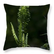 Lacy Wild Alabama Fern Throw Pillow