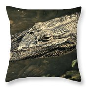 Lady Alice Queen Of The Lake Throw Pillow
