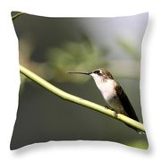 Lady Alone Throw Pillow