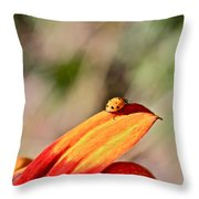 Lady Bug On A Flower Throw Pillow