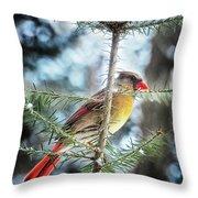 Lady Cardinal Throw Pillow