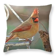 Lady Cardinal With Her Crown On Throw Pillow