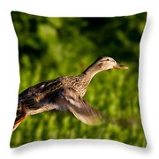 Lady Duck 2 Throw Pillow