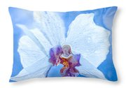 Lady Orchid The Sky Beckons Throw Pillow