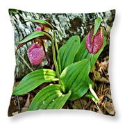 Lady Slipper I Throw Pillow