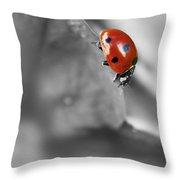 Ladybird On Leaf 1.0 Throw Pillow