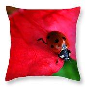 Ladybird On Petal Throw Pillow