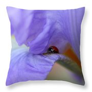 Ladybug On Iris Throw Pillow