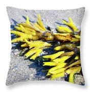 Lagoon Life Throw Pillow
