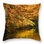 Lake And Forest In Autumn Throw Pillow