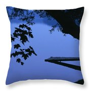 Lake And Trees At Dusk Throw Pillow