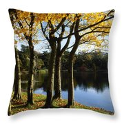 Lake And Trees, Mount Stewart, Co Down Throw Pillow