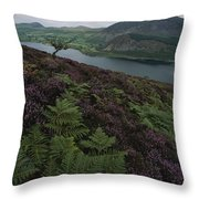 Lake District View From A Hillside Throw Pillow