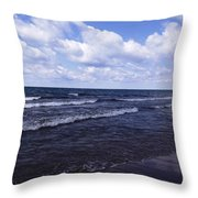 Lake Erie At Evangola State Park 2 Throw Pillow