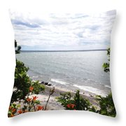 Lake Erie Beach At Sturgeon Point Throw Pillow