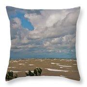 Lake Erie Storm 2368 Throw Pillow