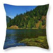 Lake Errock Throw Pillow