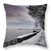 Lake Front In Winter Throw Pillow