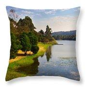 Lake Landscape Throw Pillow