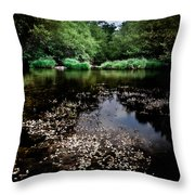 Lake Of Spirits Throw Pillow