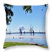 Lake Of The Black Stumps.. Tree Framed Throw Pillow
