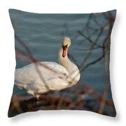 Lake Ontario Swan Throw Pillow