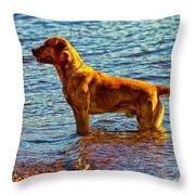 Lake Superior Puppy Throw Pillow