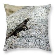 Lake Tahoe Lizard On A Hot Rock Throw Pillow