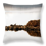 Lake Visitors Throw Pillow