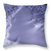 Lake Vostok, Antarctica, Satellite Image Throw Pillow