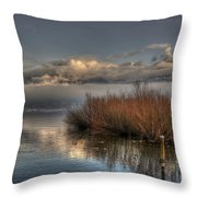 Lake With Pampas Grass Throw Pillow