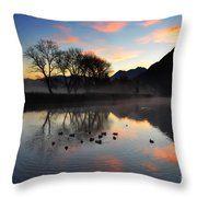Lake With Trees And Ducks Throw Pillow