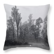 Lake With Trees Throw Pillow