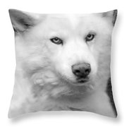 Lakota Throw Pillow