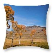 Lamar Valley Aspens Throw Pillow