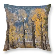Lamar Valley In The Fall Throw Pillow